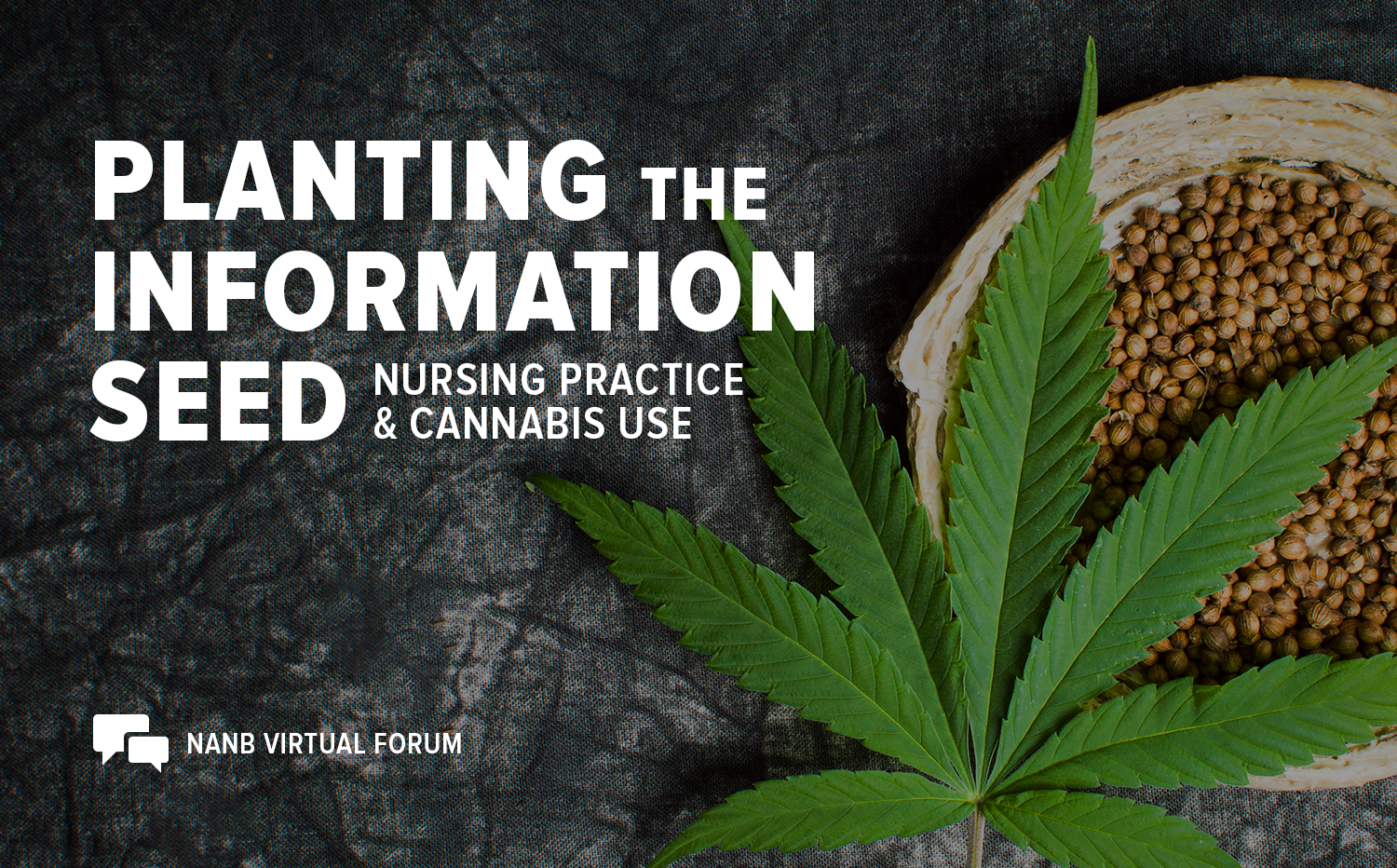Planting the Information Seed: Nursing Practice and Cannabis Use